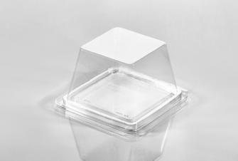 T23958 Small Showcase Sandwich Container